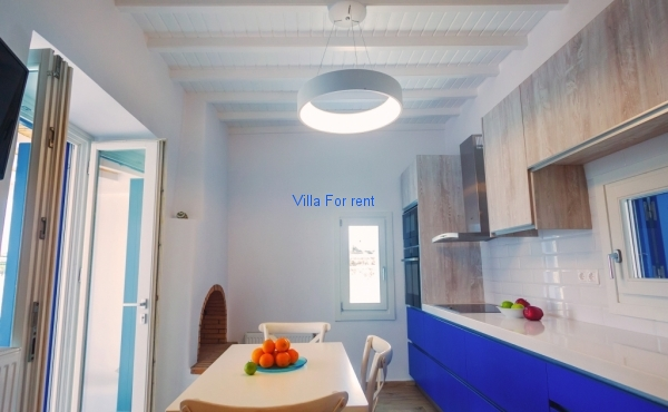 Villa Tropicalia - Kitchen 1d